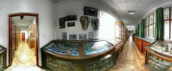 UKR_(zoo_03)