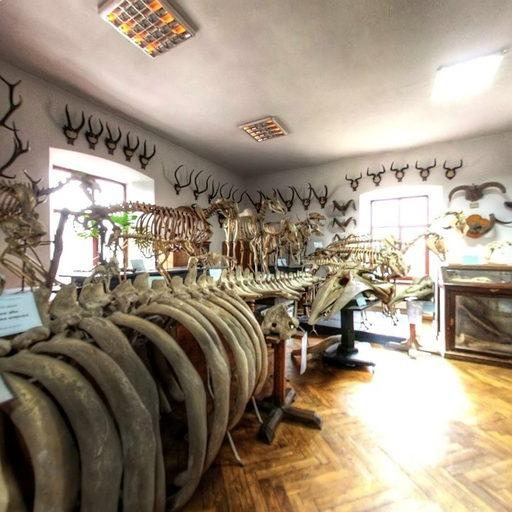 UKR_(zoo_10)