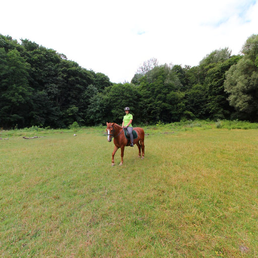 marybrodsky-ridingschool_07