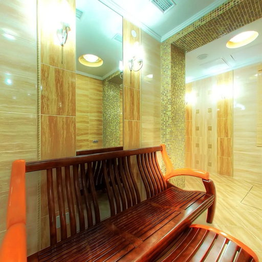Sauna in the Europe hotel